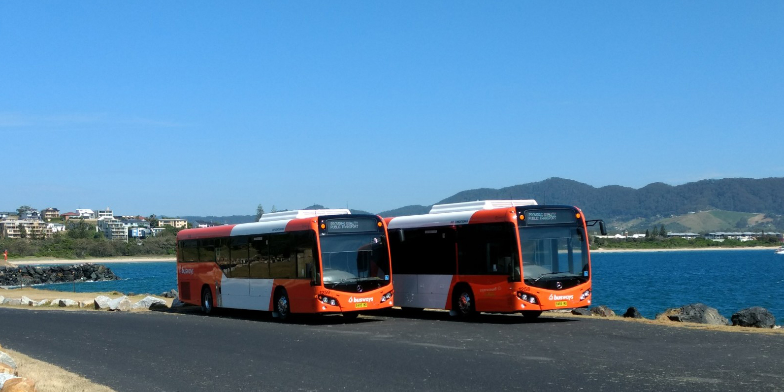 New Port Macquarie buses